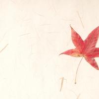 和紙と紅葉の作例写真