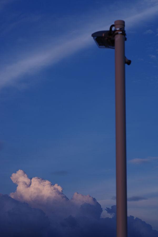 Blue Summer Skyの作例写真