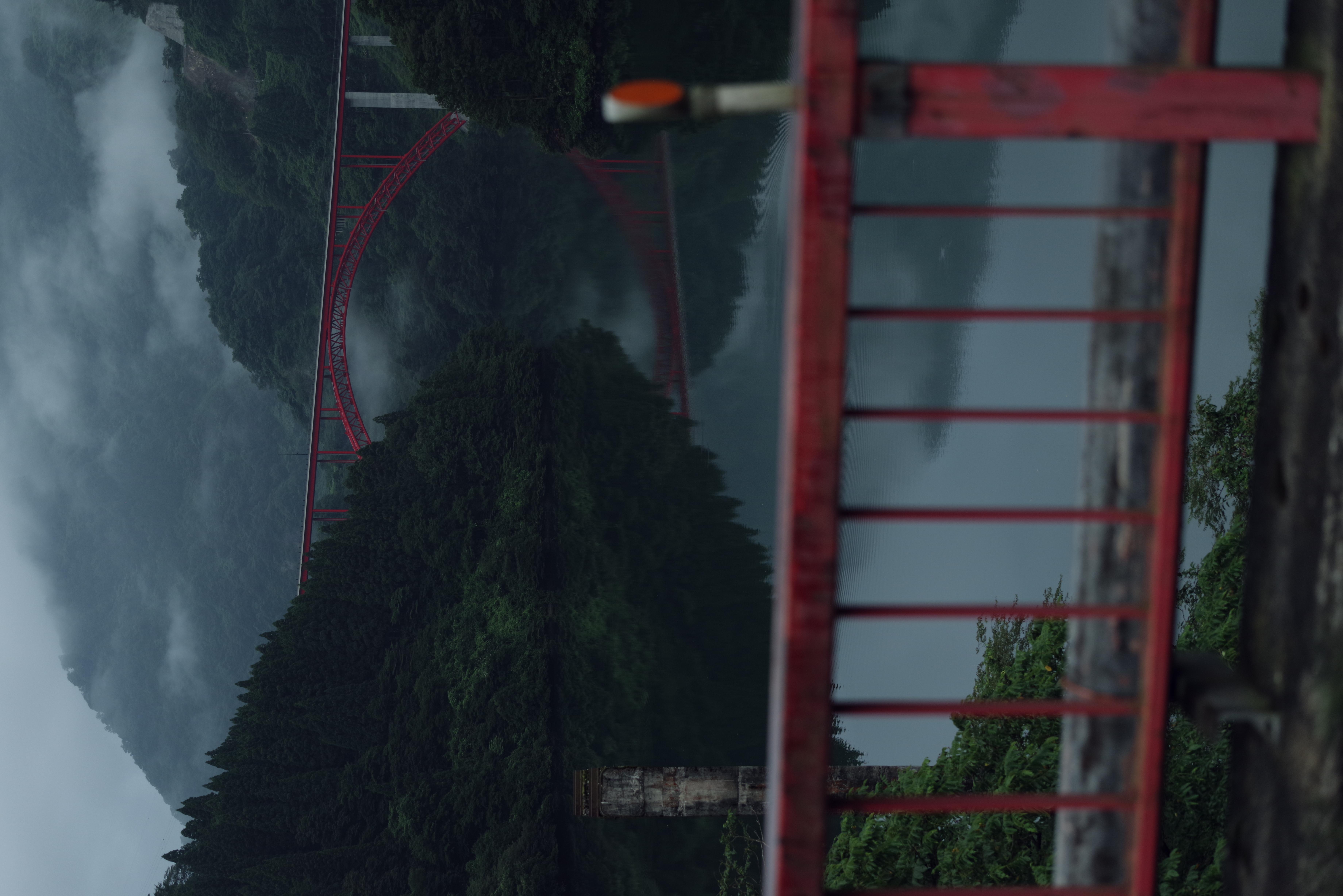霧の峡谷(利賀大橋:富山県南砺市)の作例写真