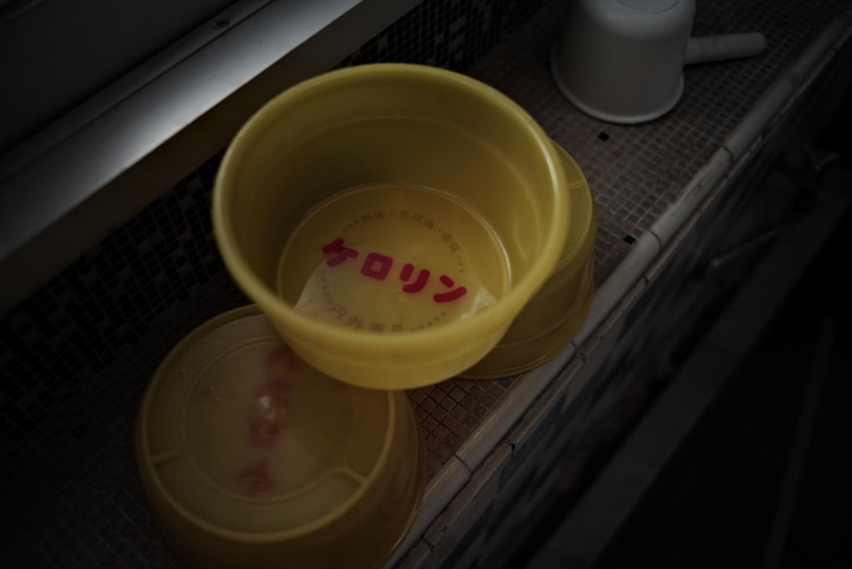 薄暗い銭湯とケロリンの風呂桶の作例写真
