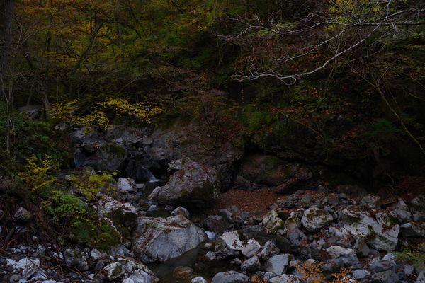 紅葉しはじめの奥多摩の様子の作例写真