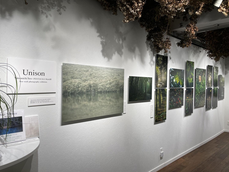 瀬尾さんの森の写真は美しい