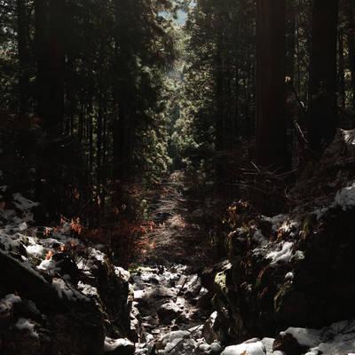 光のはしご(埼玉県武甲山)の作例写真
