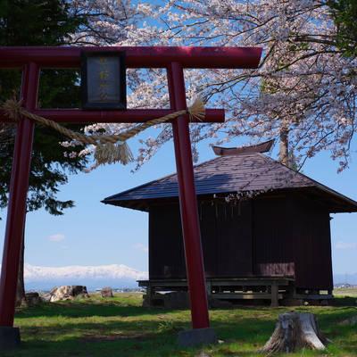 会津の春の作例写真