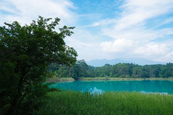 吾妻連峰と夏空が映える弁天沼の作例写真