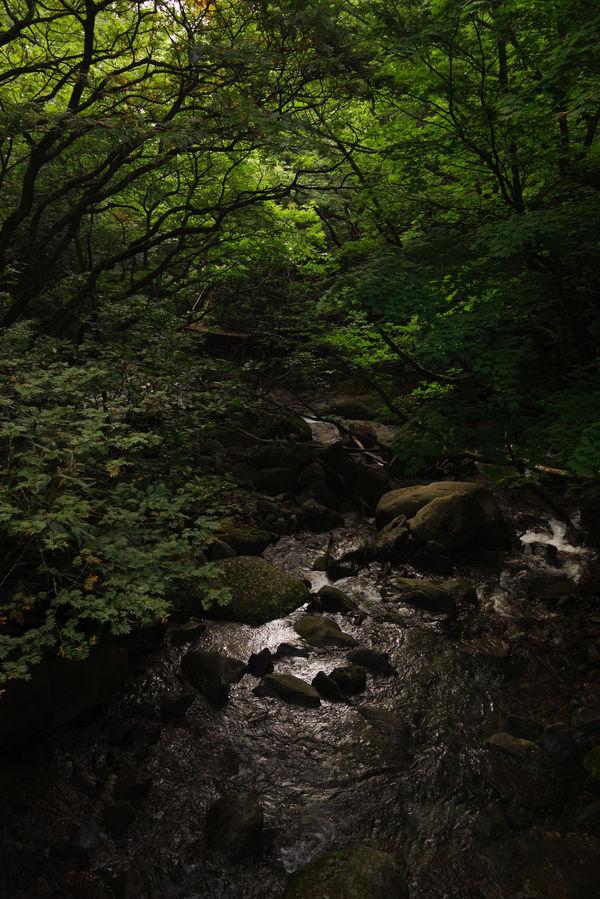 あだたら渓谷(烏川橋からの眺め)の作例写真