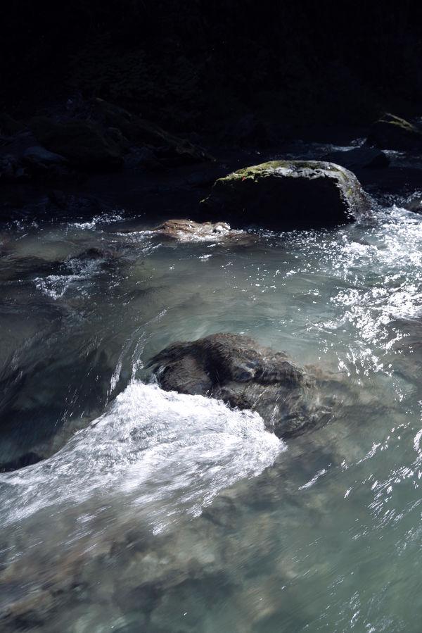 木漏れ日が差し込む夏の渓流の作例写真