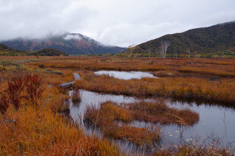 雨模様の池塘と燧ヶ岳の作例写真