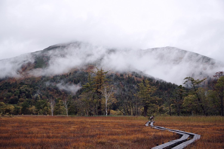 絵画的な風景を描く紅葉の尾瀬ヶ原(至仏山)の作例写真