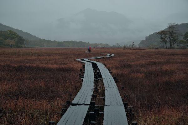 霞の先に存在感を示す燧ヶ岳の作例写真
