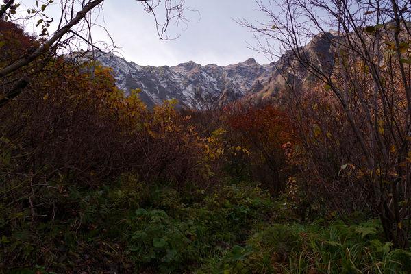 谷川岳厳剛新道の紅葉の作例写真
