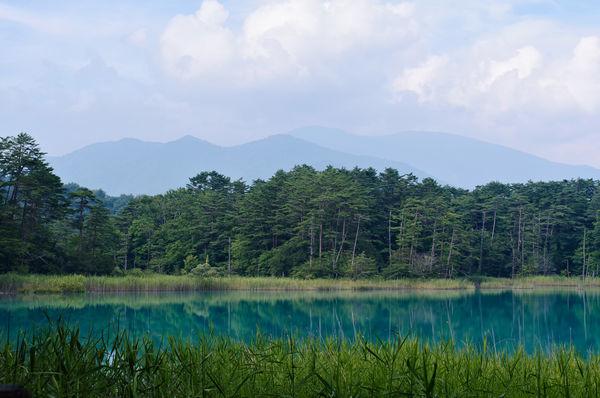 夏の弁天沼と吾妻連峰の作例写真