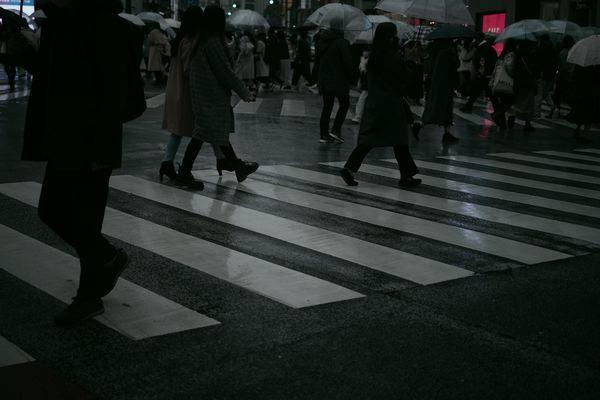 雨と週末の作例写真