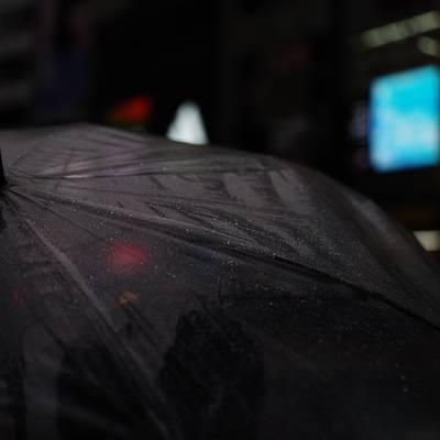 待ちぼうけの雨傘の作例写真