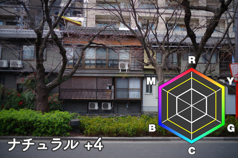 natural+4.jpg