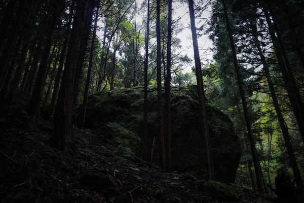 山中の大岩の作例写真