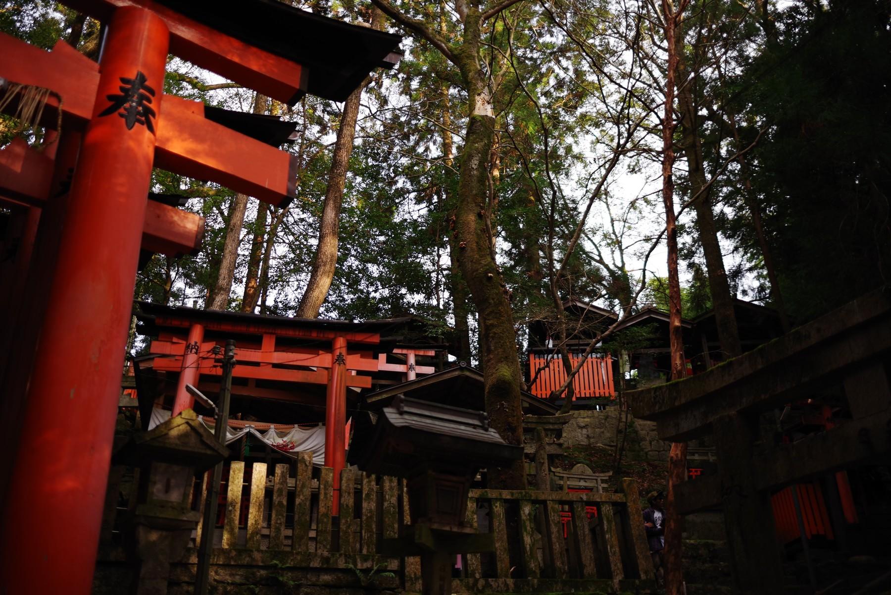 伏見稲荷のお塚群の作例写真