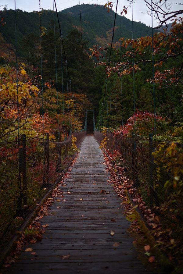 奥多摩の道所橋(どうところばし)の作例写真