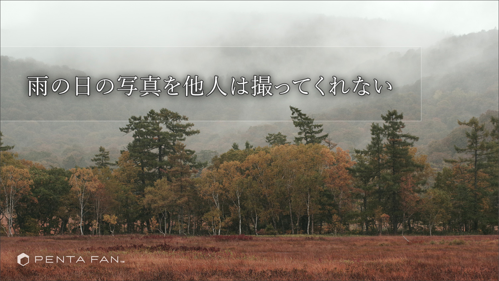 【雨にうたえば】雨の尾瀬は俺が撮る
