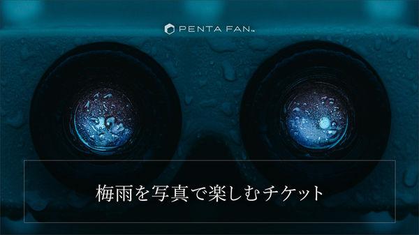 梅雨を写真で楽しむチケット【雨にうたえば】